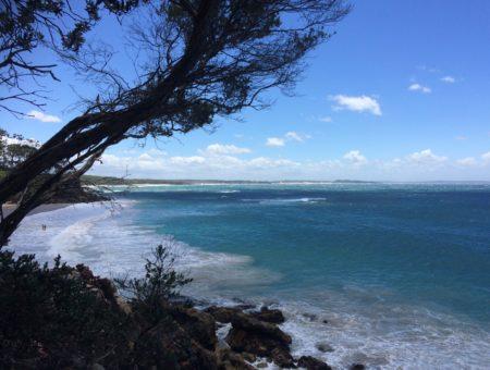 Plages, sport, rencontres… : encore une semaine bien remplie à Sydney et ses alentours